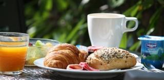 hotel-dauphin-petit-dejeuner-jardin-5
